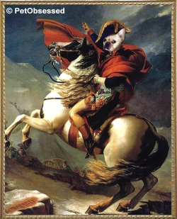 Jacques-Louis David - Bonaparte at Mont St Bernard