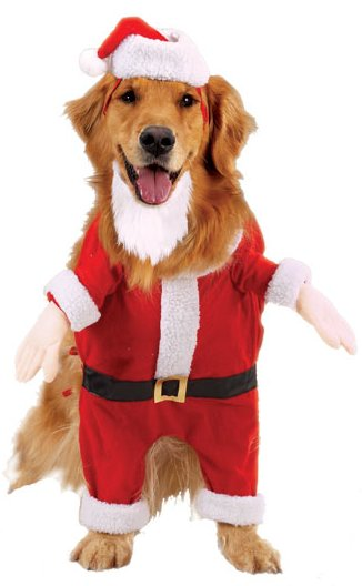 Casual Canine Kris Kringle Costumes - by Casual Canine
